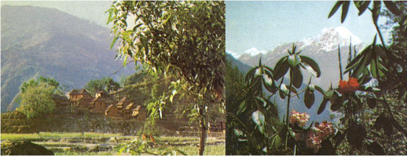 First wildlife trek into the Gatlang Valley in Nepal
